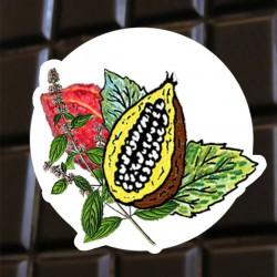 Brut de cacao menthe