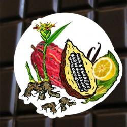 Chocolat noir Gingembre Citron