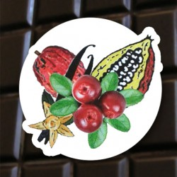 Chocolat noir Cranberry