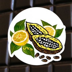 Chocolat noir citron
