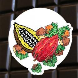 Brut de cacao noisettes
