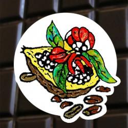 Chocolat noir au Guarana d'Amazonie